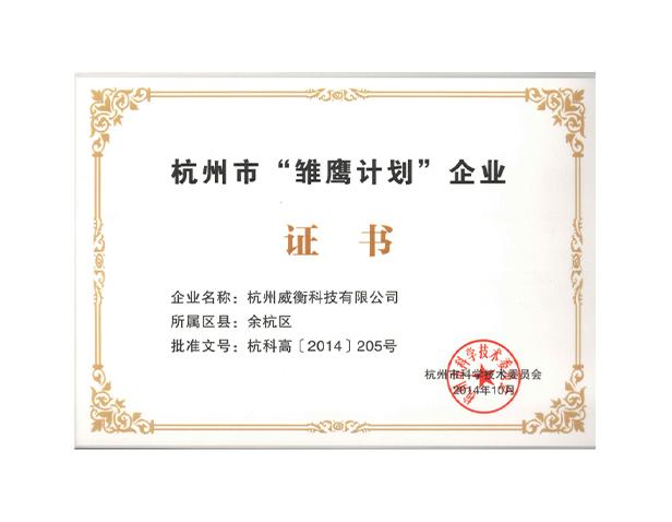 杭州市雏鹰计划证书