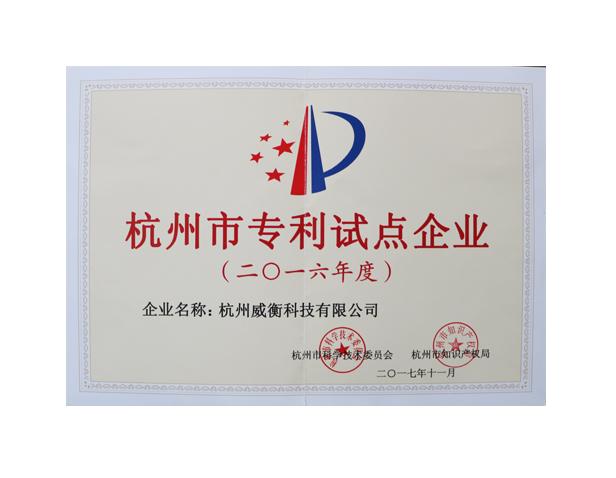 杭州市专利示范企ye